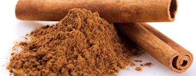 Cinnagest Extract Powder